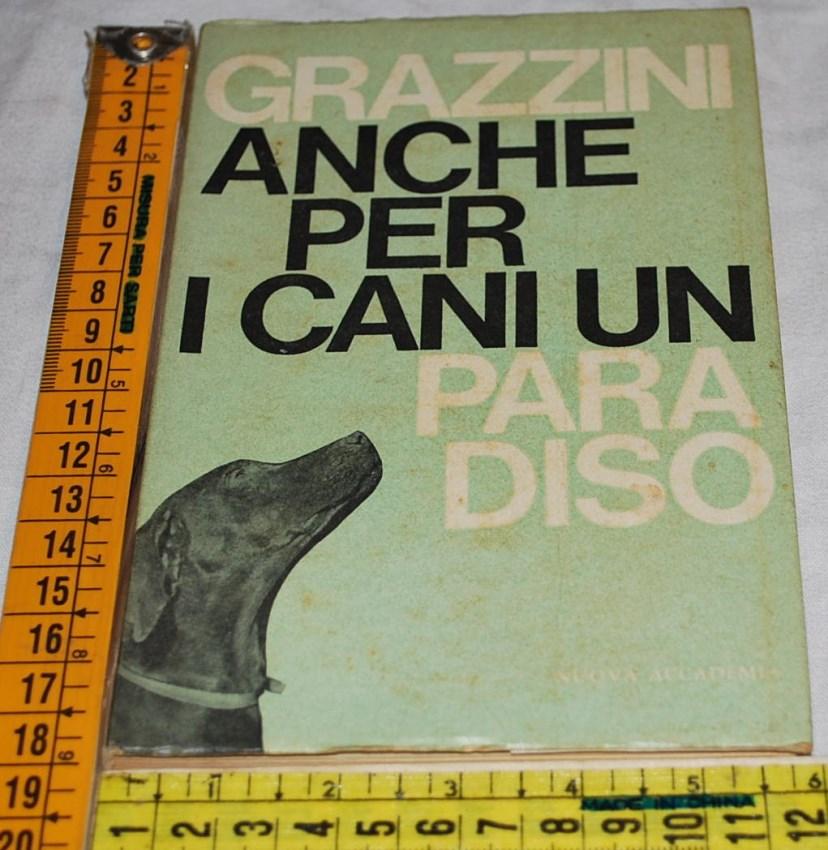 http://www.labancarelladiziasam.it/nuove_inserzioni2/grazzini_cani_280514.jpg