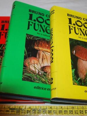 Cetto Bruno - 1000 funghi - 3 volumi editrice Erpi