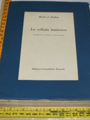 Dubos René J. - La cellula batterica - Einaudi