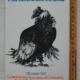Grady James - I sei giorni del condor - Rizzoli