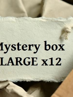Mystery box LARGE x12
