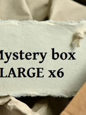 Mystery box LARGE x06