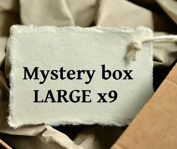 Mystery box LARGE x09