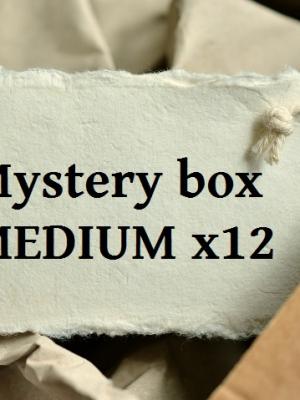 Mystery box MEDIUM x12