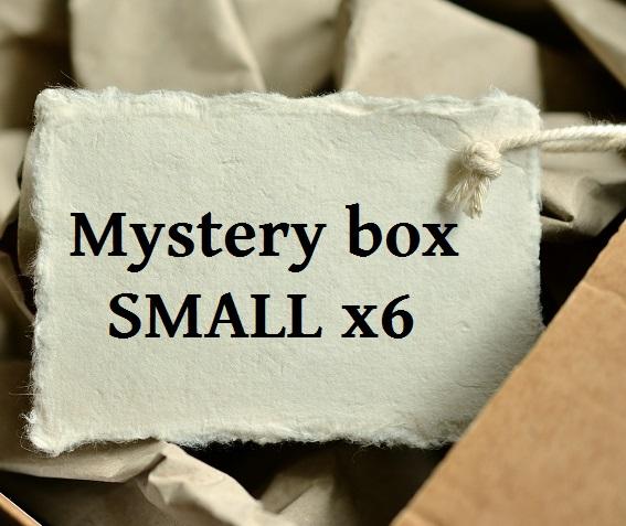Mystery box SMALL x06