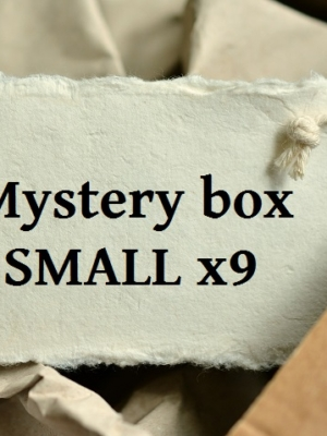 Mystery box SMALL x09